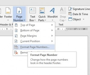 Header and Footer - Page Numbering - image 2